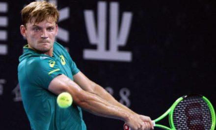 ATP Shenzhen: Dzumhur bat Zverev pour continuer la course des rêves.  Goffin tops Young